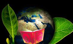 Modernleşme ile İnsanileşme İlişkisi/İlişkisizliği